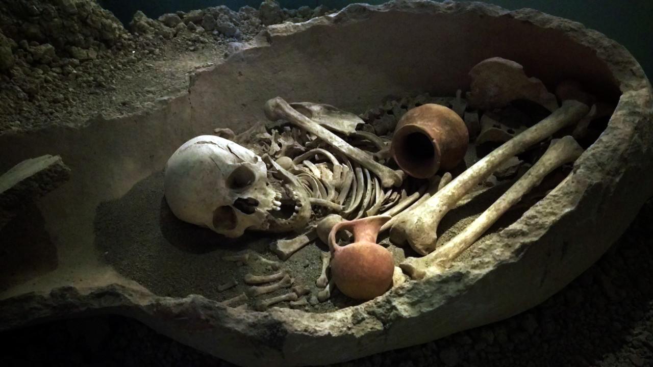Antalya museum skelet