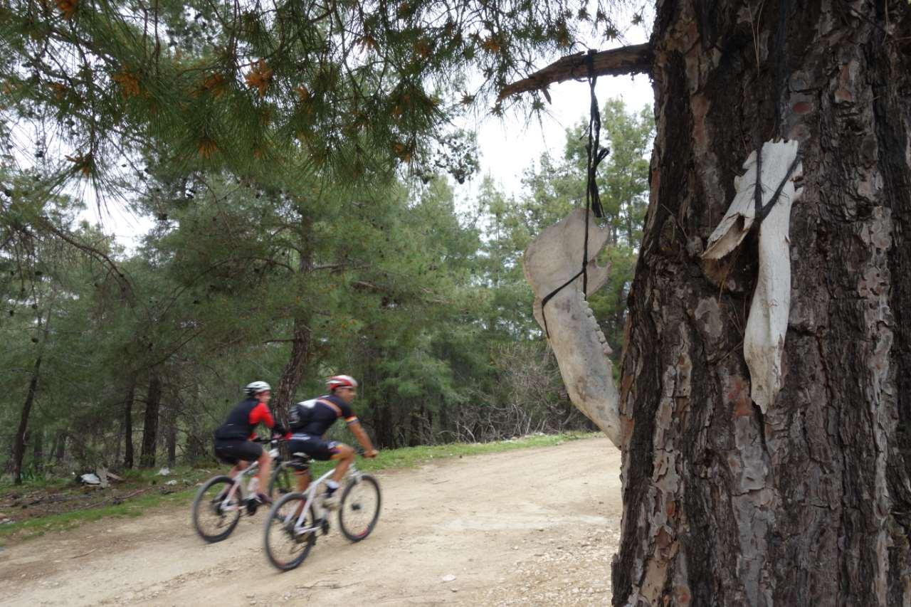 Bikefun Turkije boom met schedels
