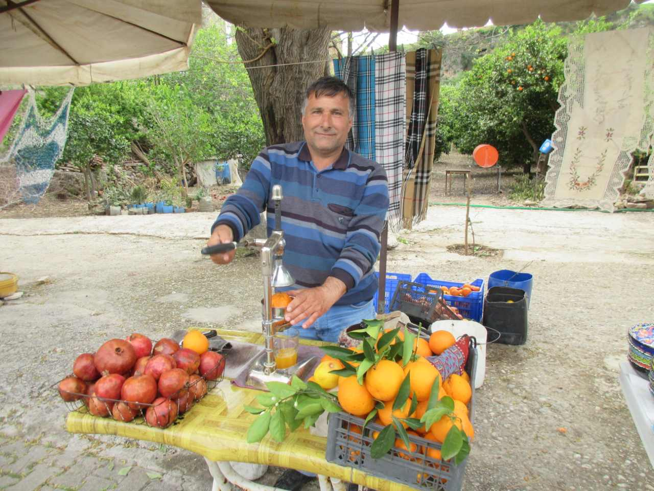 Bikefun Turkije fruit persen