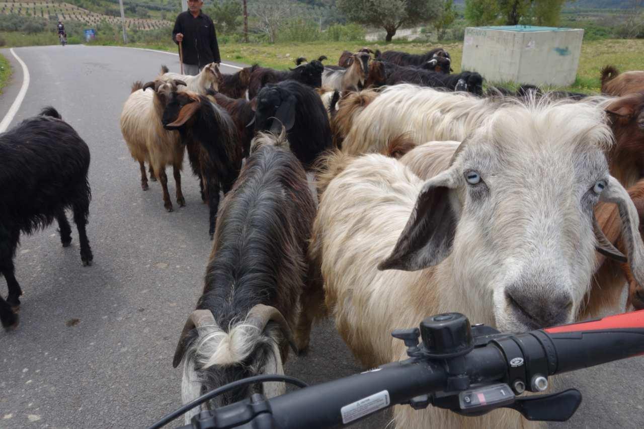 Bikefun Turkije geiten