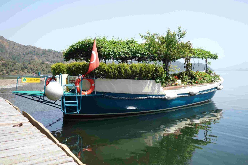 Summer garden botanic boat aan de steiger, een sloep vol groen en bloeiende planten