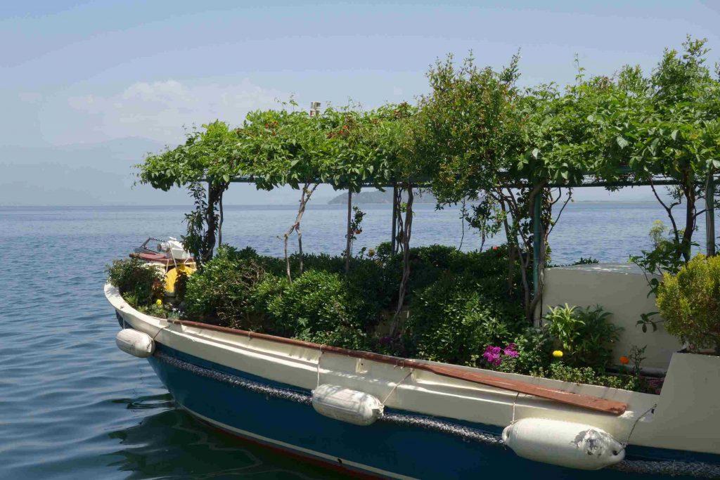 Summer garden botanic boat, een boot met groen aan de zijkanten en een zonnescherm van klimplanten bovenop