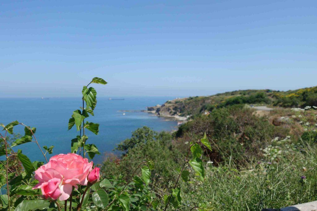 Uitzicht op de Zwarte Zeekust vanuit Kiliyos-Thracië, groen begroeide rotskliffen, zee en bloeiende roos