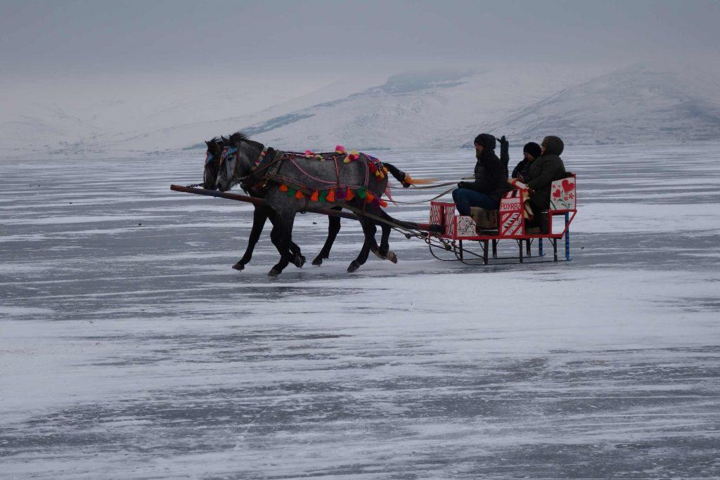 Oost-Turkije arrenslee op Cildir meer