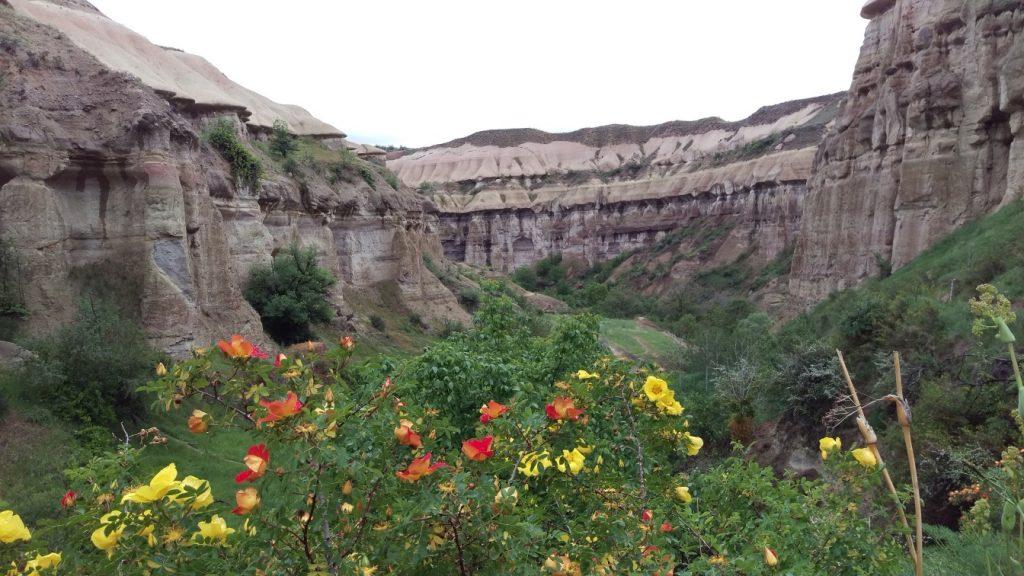 Pigeon valley Uchisar